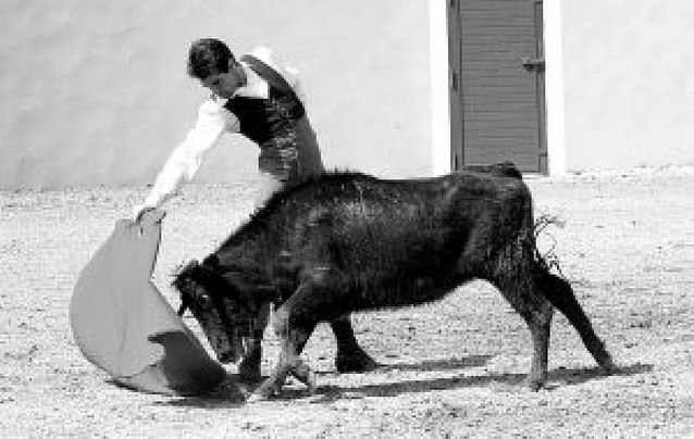 Francisco Marco vuelve a torear después del percance en la plaza de Arzacq