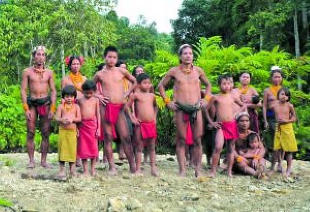 Vivir en una tribu