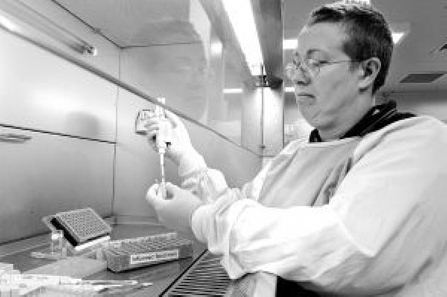 Salud descarta cuatro posibles alertas de gripe porcina en las últimas horas