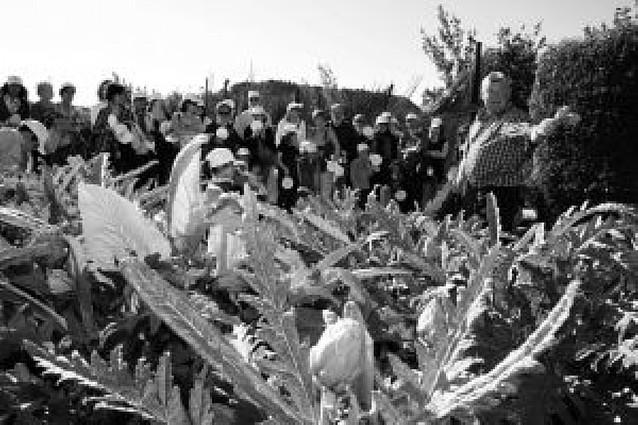 Más de 100 personas participan en las visitas guiadas a la Mejana