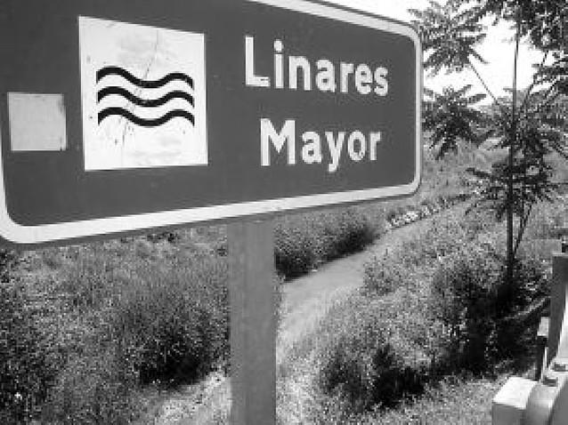 Mendavia limpiará la orilla del río Linares