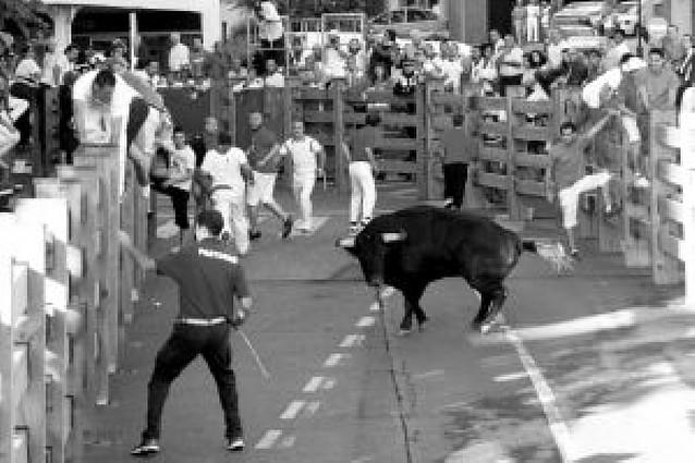 """El alcalde dice que los toros se contratan para mejorar la feria taurina y """"se ha conseguido"""""""