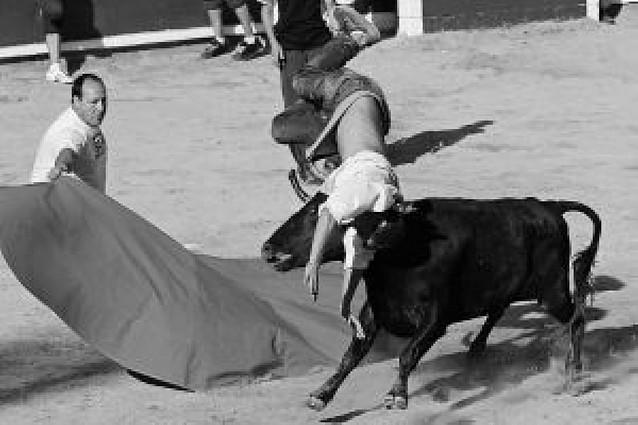 Un encierro relámpago que se cerró sin incidentes en las vacas