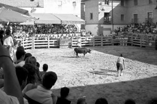 Una tarde detrás de las vaquillas