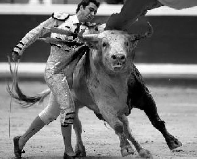 Más toros que toreros