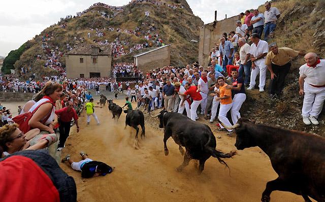 Navarra, 1.200 festejos taurinos