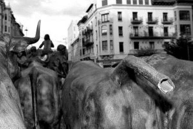 Rompen el rabo de uno de los toros de la escultura del encierro