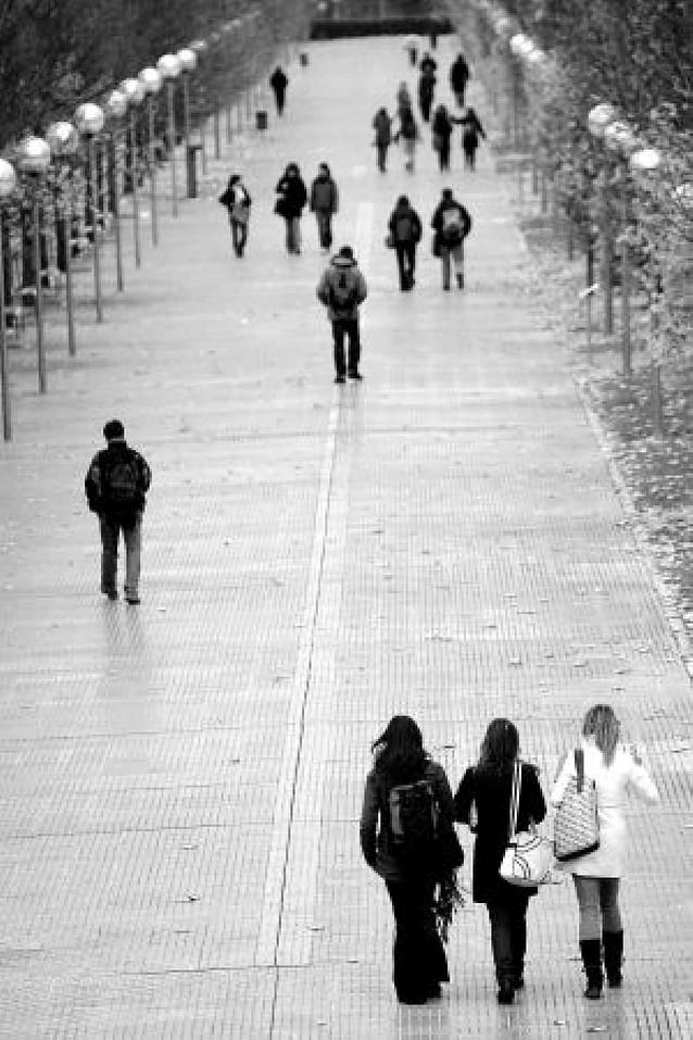 Universitarios con beca Erasmus critican una rebaja de un 50% en la ayuda foral