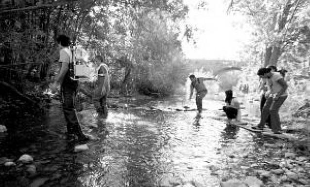 La salud del agua y ecosistema del Arga en su paso por Pamplona aprueba justo