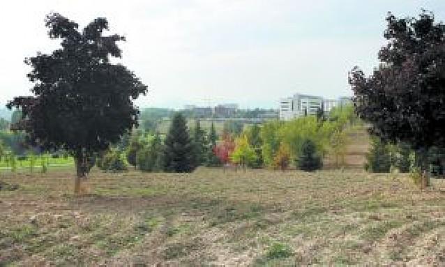 La Universidad de Navarra comenzará a construir en 2010 su Centro de Arte