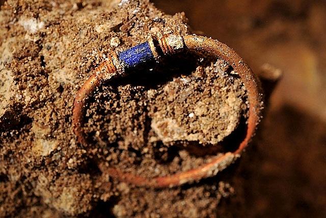 La tortuga laúd hallada en Sitges llevaba tres días muerta